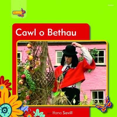 Pobl Pentre Bach: Cawl o Bethau (Paperback)