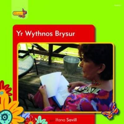 Pobl Pentre Bach: Yr Wythnos Brysur (Paperback)