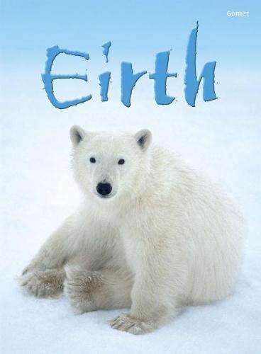 Cyfres Dechrau Da: Eirth (Hardback)