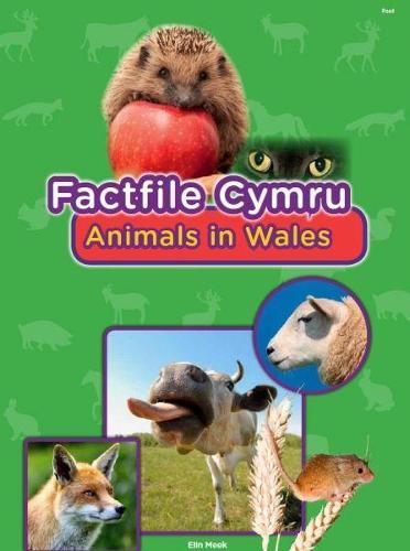 Factfile Cymru: Animals in Wales (Paperback)