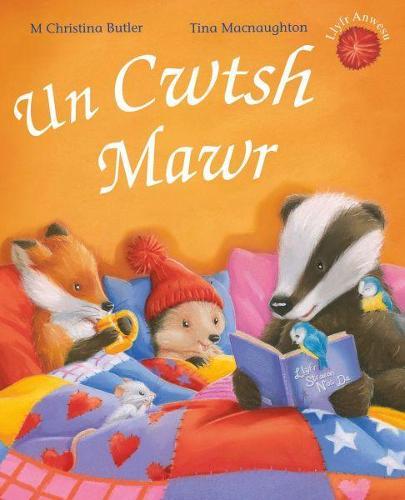 Cyfres Draenog Bach: Un Cwtsh Mawr (Paperback)