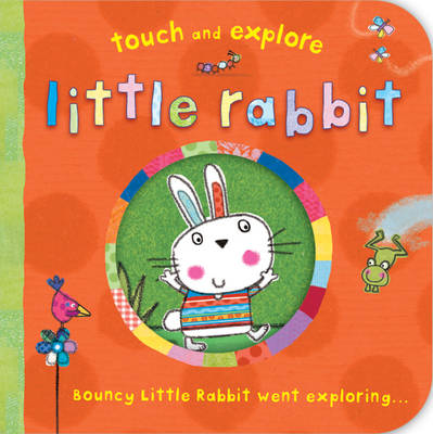 Little Rabbit - Touch and Explore (Board book)