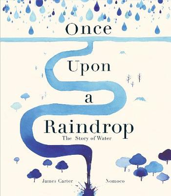 Once Upon a Raindrop: The Story of Water (Hardback)