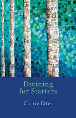 Divining for Starters (Paperback)