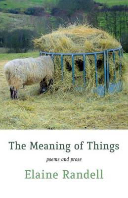 The Meaning of Things (Paperback)