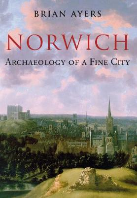 Norwich Archaeology of a Fine City (Paperback)