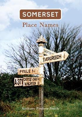 Somerset Place Names (Paperback)