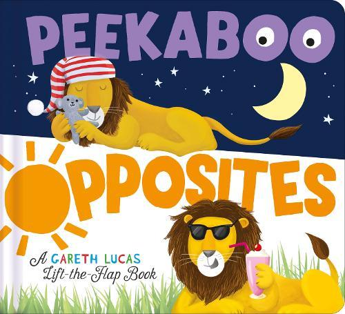Peekaboo Opposites - Peekaboo