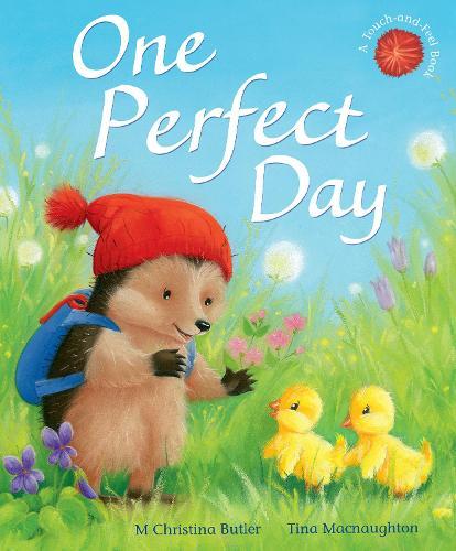 One Perfect Day - Little Hedgehog 11 (Hardback)