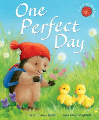 One Perfect Day - Little Hedgehog 11 (Paperback)