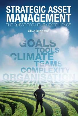 Strategic Asset Management: The quest for utility excellence (Paperback)