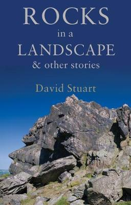 Rocks in a Landscape: and others stories (Paperback)