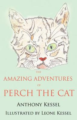 The Amazing Adventures of Perch the Cat (Paperback)