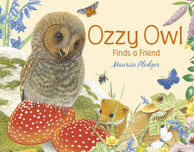 Ozzy Owl Finds a Friend (Board book)