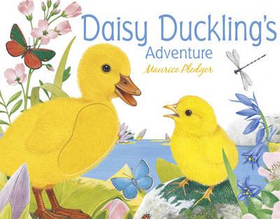 Daisy Duckling's Adventure (Hardback)