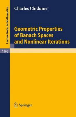 Geometric Properties of Banach Spaces and Nonlinear Iterations - Lecture Notes in Mathematics 1965 (Paperback)