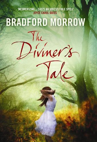 The Diviner's Tale (Hardback)