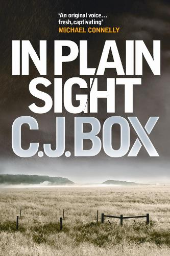 In Plain Sight - Joe Pickett (Paperback)