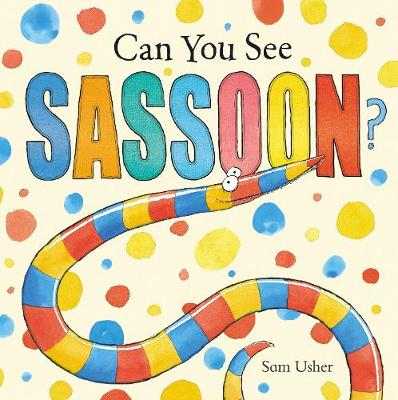 Can You See Sassoon? (Paperback)