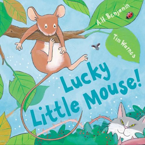 Lucky Little Mouse - Mini Hardbacks (Hardback)