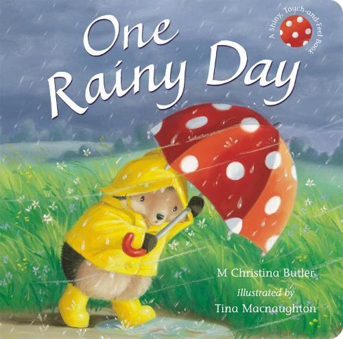 One Rainy Day (Board book)