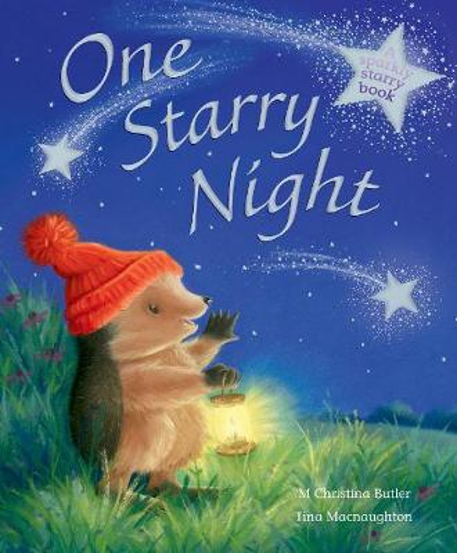 One Starry Night (Paperback)