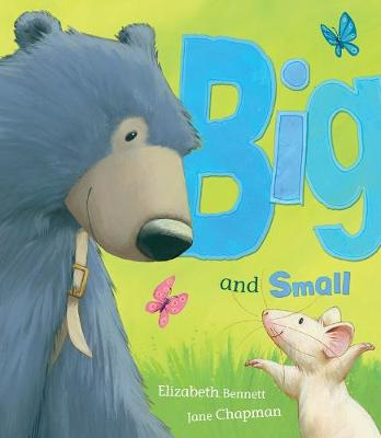 Big and Small (Paperback)