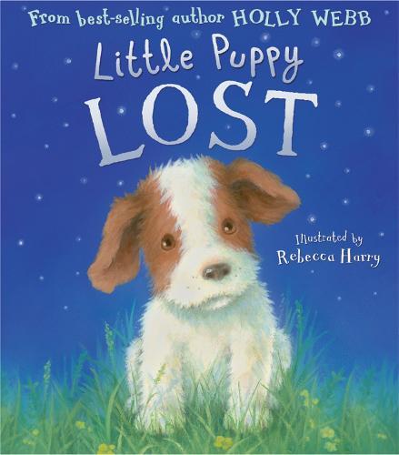 Little Puppy Lost (Hardback)