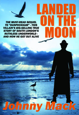 Landed on the Moon (Paperback)