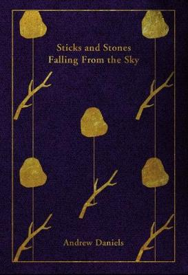 Sticks and Stones Falling From the Sky (Paperback)