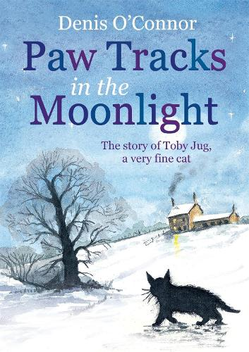 Paw Tracks in the Moonlight (Paperback)