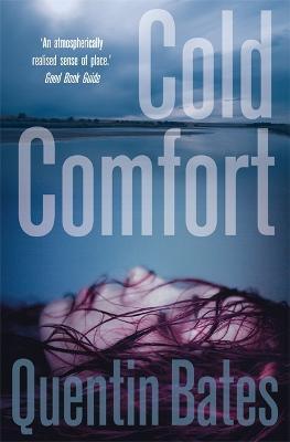Cold Comfort - Gunnhildur Mystery (Paperback)