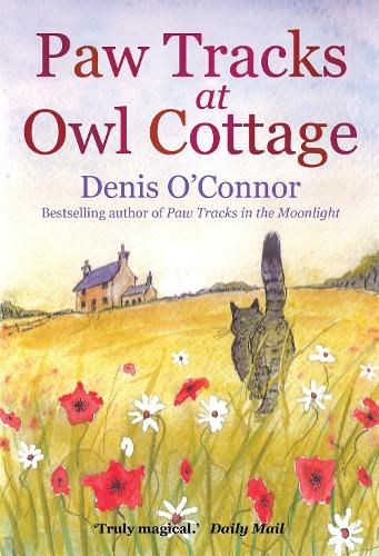 Paw Tracks at Owl Cottage (Paperback)