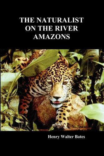 The Naturalist on the River Amazons: A Record of Adventures, Habits of Animals, Sketches of Brazilian and Indian Life, and Aspects of Nature Under the Equator, During Eleven Years of Travel (Paperback)