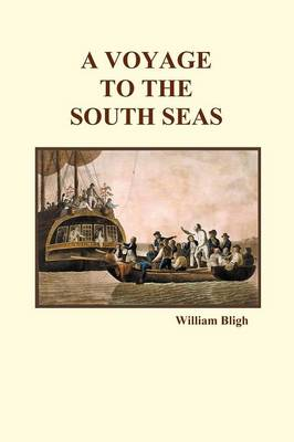 A Voyage to the South Seas (Paperback) (Paperback)