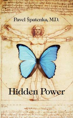 Hidden Power: The Mastery Of Emotional Openness (Paperback)