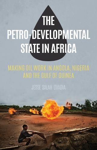 The Petro-Developmental State in Africa: Making Oil Work in Angola, Nigeria and the Gulf of Guinea (Hardback)