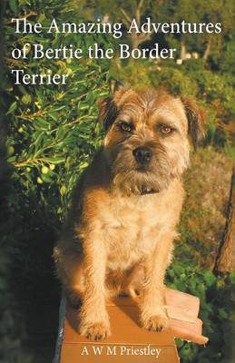 The Amazing Adventures of Bertie the Border Terrier (Paperback)