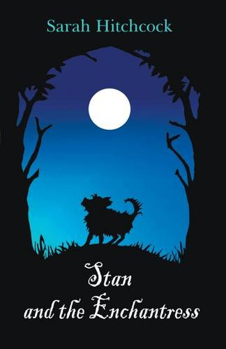 Stan and the Enchantress (Paperback)