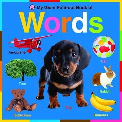 Words: Wipe Clean Activity Flashcards - Wipe Clean Activity Flashcards (Board book)