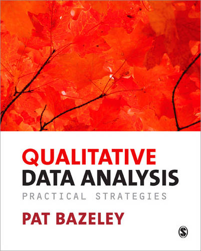 Qualitative Data Analysis: Practical Strategies (Paperback)