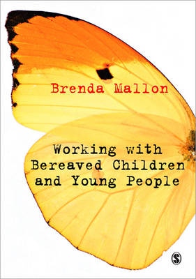 Working with Bereaved Children and Young People (Paperback)