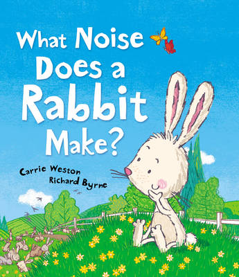 What Noise Does a Rabbit Make? (Hardback)