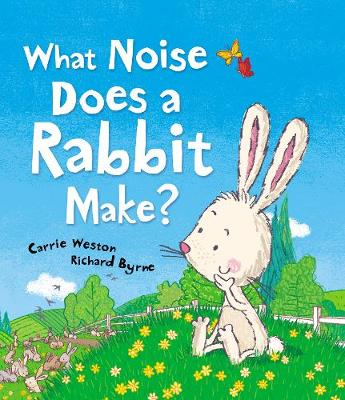 What Noise Does a Rabbit Make? (Paperback)