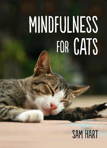 Mindfulness for Cats (Hardback)