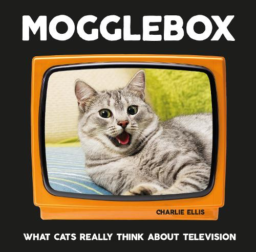 Mogglebox: What Cats Really Think About Television (Hardback)