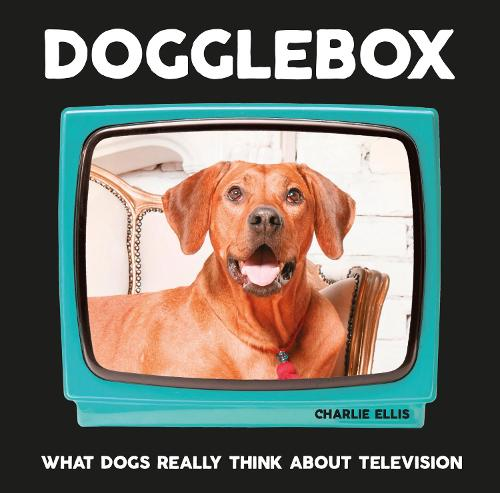 Dogglebox: What Dogs Really Think About Television (Hardback)