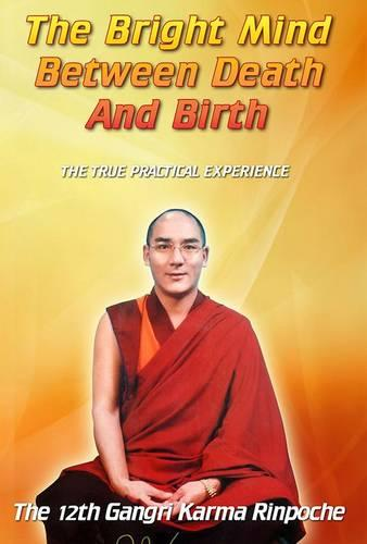 The Bright Mind Between Death and Birth (Paperback)