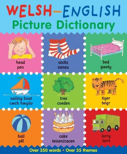 Welsh-English Picture Dictionary (Paperback)