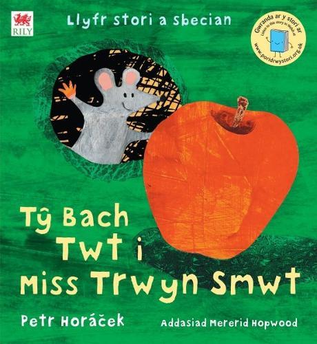 Ty Bach Twt i Miss Trwyn Smwt (Paperback)